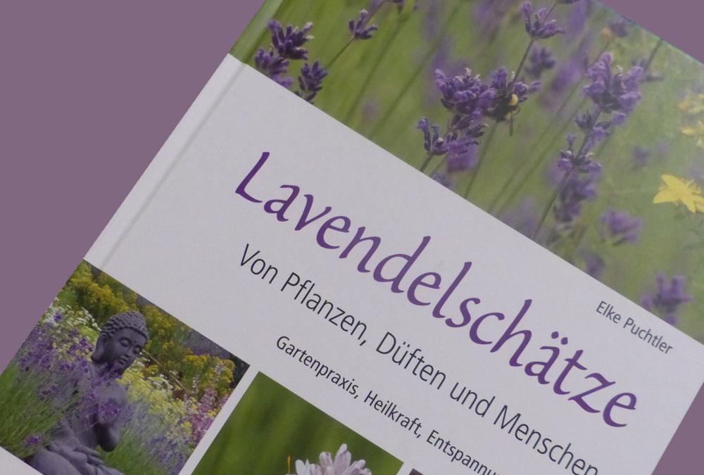 Unser duftender Buchtipp Lavendel